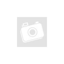 SAN BENEDETTO ICE TEA 1,5L CITROM 6db #